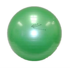 65CM Sports Balance Gym Ball Pilates Yoga Fit Exercise Office Chair Core Workout