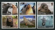 South Georgia & Sandwich Isl 2018 MNH Antarctic Fur Seals 6v Set Animals Stamps