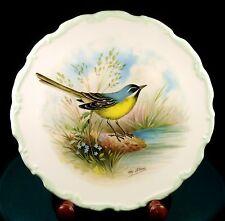 Royal Albert - Woodland Birds Collection - Yellow Wagtail - By Reginald Johnson