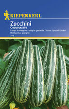 Zucchini * Coucourzelle * MHD 01/21 Cucurbita Kiepenkerl 379