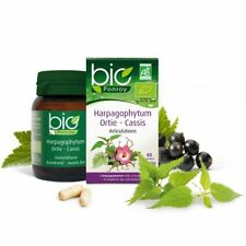 Harpagophytum - Ortie - Cassis Bio