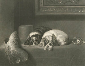 J. Outrim (fl. 1834 - 1854) - Early 20th Century Engraving, The Cavalier's Pets