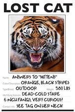 LOST CAT photo poster FUNNY TIGER wild animal KID FRIENDLY unique 24X36 BOLD