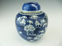 Chinese Porcelain Blue and White Prunus Ginger Jar with Lid