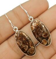 Natural Turritella Agate 925 Solid Sterling Silver Earrings Jewelry, ED31-6