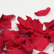 Blütenblätter / Streublüten für Hochzeit Streukörbchen ROT
