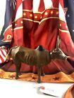 """8"""" Antique American Composition Schoenhut Circus Zebu Doll! Rare! Adorable!18199"""
