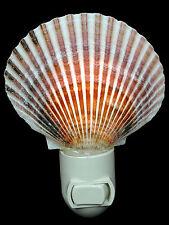 Real Seashell Night Light Calico Pectin Shell Decorative Beach Decor