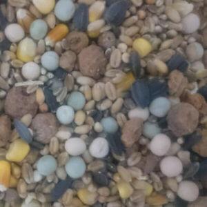 Partikelmix Spezial Karpfen Schleie, Hanfsamen, Mais, Tigernüsse 2,10€ pro 1Kg