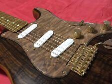 """Fender Custom Shop Artisan Rosewood 2016 Strat Derek Kimball """"Custom"""""""
