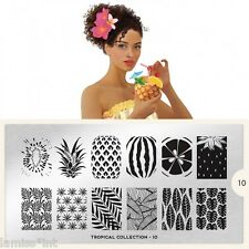 MoYou London Tropical 15 Collection Stamping Schablone Flamingo Vogel