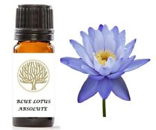 Grado terapéutico 100% Pure Blue Lotus absoluta del petróleo