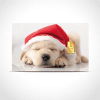 Gold Geschenkkarte / Geschenkidee / 1g Barren / Weihnachten Süß Xmas Welpe Hund