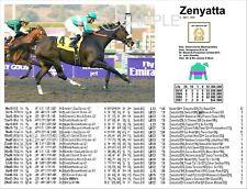 Zenyatta Lifetime Performance Print 8 1/2 x 11