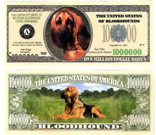 Dollarschein Bloodhound