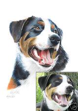 Auftragsmalerei 0010 DIN A3 /  Farbige Kohlezeichnung  / Tierportrait
