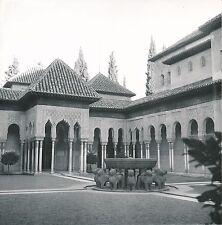 ESPAGNE c. 1950 - Palais Nasrides  Fontaine  Alhambra Grenade - Div 10251