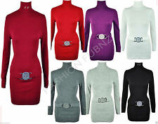Unbranded Acrylic Polo Neck/Roll Neck Dresses for Women
