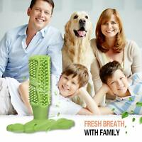 High Quality Dog Toothbrush Chew Toy Dental oral Care Brush Stick Rubber Pet US