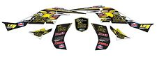 Can Am DS-450 Graphics Kit ATV Quad Graphic Kit
