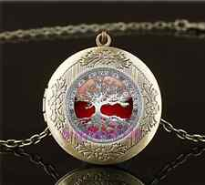 Vintage Celtic Tree Of Life Photo Glass Brass Chain Locket Pendant Necklace