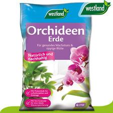 Westland 4L Orchideen Erde Nummer 1 in England für den Garten Wachstum Blumen