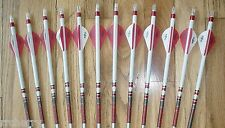 12 Carbon Express Maxima RED Mathews Edition 350 Arrows! Blazer Vanes/Dip/Crest