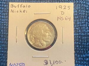 Exceptional 1925 D Buffalo Nickle MS 64 Details