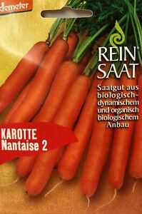 Karotte Nantaise 2 - Saatgut Samen - Demeter aus biologischem Anbau Bio Reinsaat
