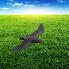 Scaccia Dissuasore Uccelli Spaventa Passeri Piccioni Repellente Deterrente