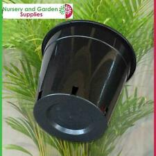 "250mm Plant Pot - Pack of 10 - Plastic Growers Pot (10"") - Garden, Nursery"