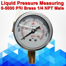 """1/4""""NPT Hydraulic Liquid Filled Pressure Air Water Gauge Gage 5000 psi 35000 Kpa"""