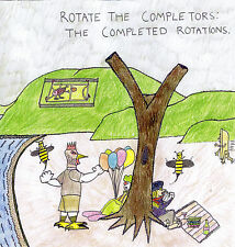 Rotate The Completor 2nd LP #d/100 outsider New Zealand Flying Nun Dead C