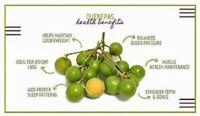 Spanish Lime Melicoccus Bijugatus Genip Quenepa Mamoncillo Mamon Tree Plant Orga