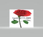 harztime111-2009