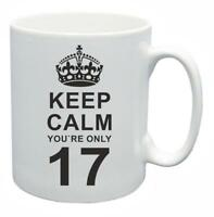 17th Novelty Birthday Gift Present Tea Mug Keep Calm Your Only 17 Coffee Cup