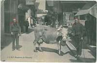 Vintage postcard: SWITZERLAND - SCHWEIZ : Champéry, Valais 1914 - ETHNIC