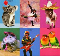 Assorted Pack of 6 Photo Birthday Greeting Cards Mixed Greetings Card Bundles