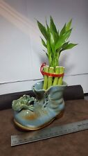 LUCKY REAL LIVE BAMBOO PLANT  CERAMIC VASE CHRISTMAS GIFT CUTE DECOR 🎄
