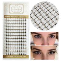 NEW Black Premade Fan Volume Eyelash Extensions 3D 5D 6D Cluster Lashes C Curl