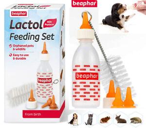 LACTOL Beaphar FEEDING Milk Puppy Kitten Dog Bottle Brush 4 X Teats FREE post