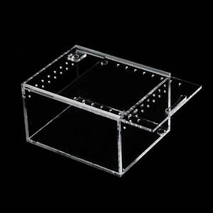 Container Feeding Insect Reptile Acrylic Spider Case Box Breeding Transport
