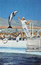 High-Jumping Porpoise, Marineland of the Pacific Oceanarium ca 1960s Postcard