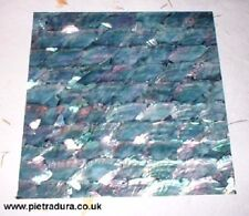 Silver Abalone  Shell Laminate 4 Jewelry or Luthier 8x8