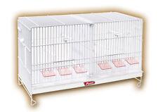 Jaula de cría 60cm Blanca Pedros Jaula Para Pajaros Canarios, Jilgueros y Pajaro