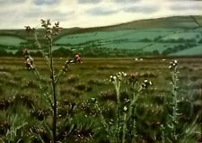 "Original Signed Oil Painting entitled ""Yorkshire Moors"" by Audrey Greaves"