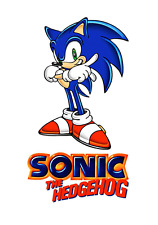 Sonic The HedgeHog #1 T-shirt Iron on transfer 5x7