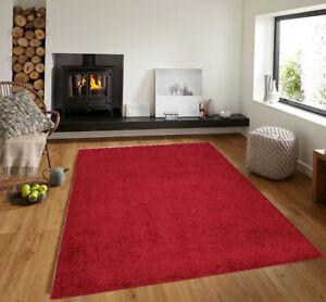 Modern Shaggy Everyday Area Rug Floor Rug Shag Carpet Red