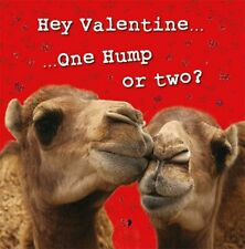Valentines Day Card General Kissing Camels