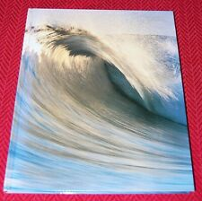 The Perfect Day: 40 Years of Surfer Magazine, Hardcover, 2001